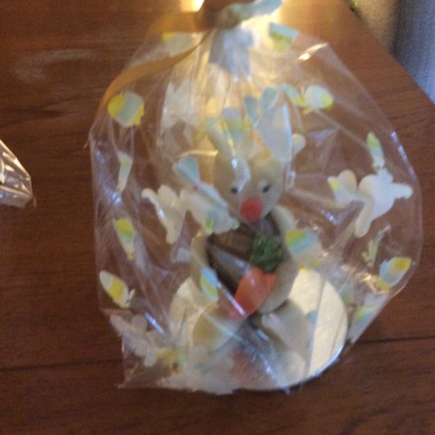 rabbit in gift bag - 3 April 2015