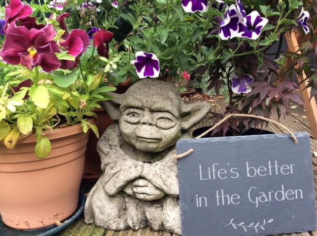 Yoda flowers