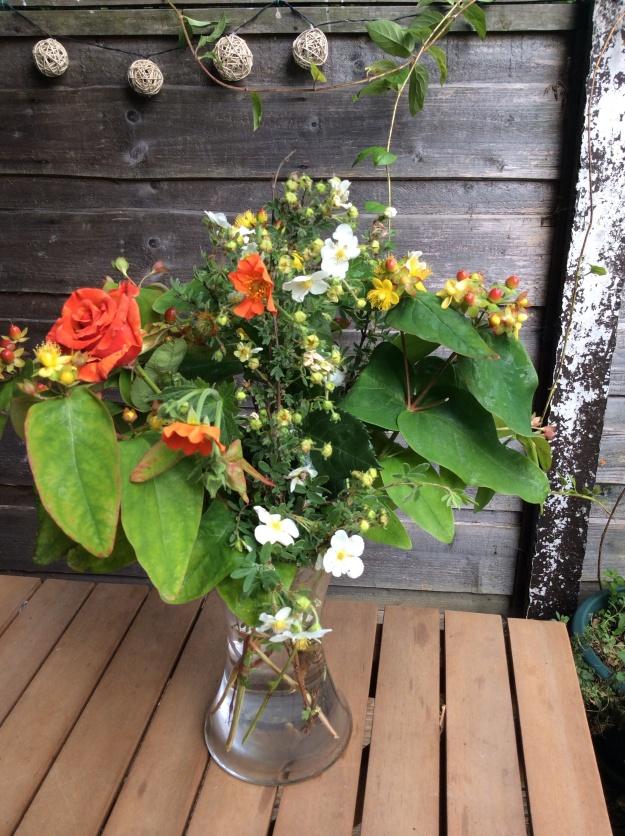 rose, geum, hypericum, pontenilla