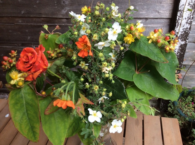 close up - rose, hypericum, pontentilla, geum - In a vase on Monday