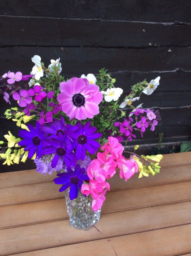 crystal vase with potentilla, anemone, wallflower, pergolonium and kale - 8 June 2015