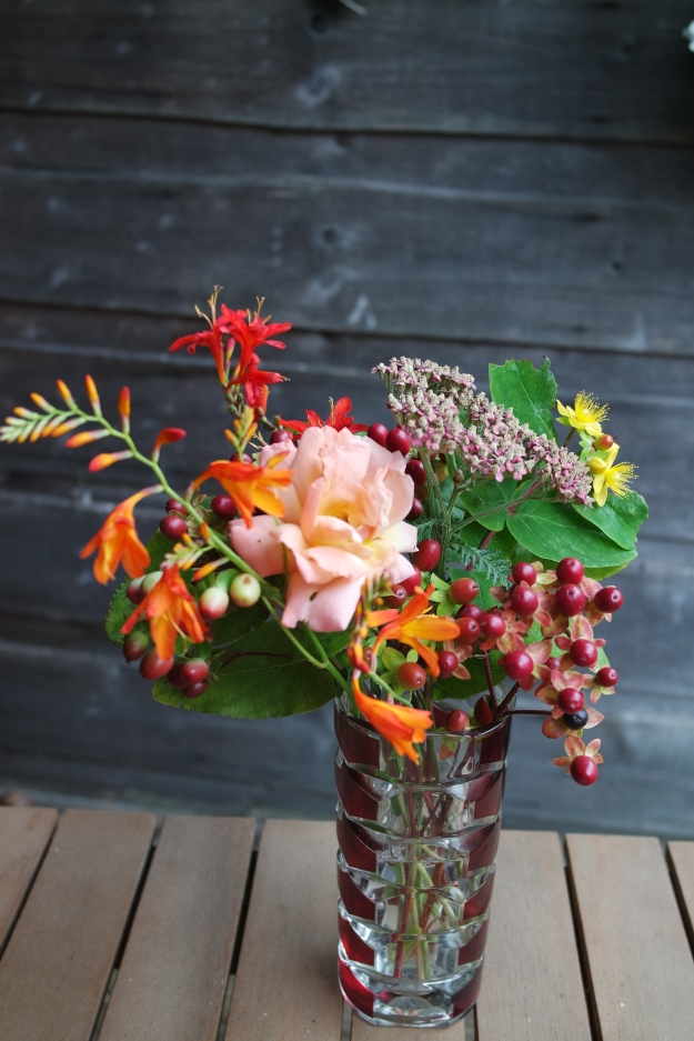 crocosmia, rose, achillea and hypericum - copyright Rebecca Jones 2015
