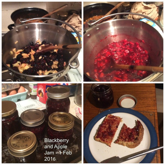 Collage of Blackberry and Apple Jam - Inc Jars and Toast