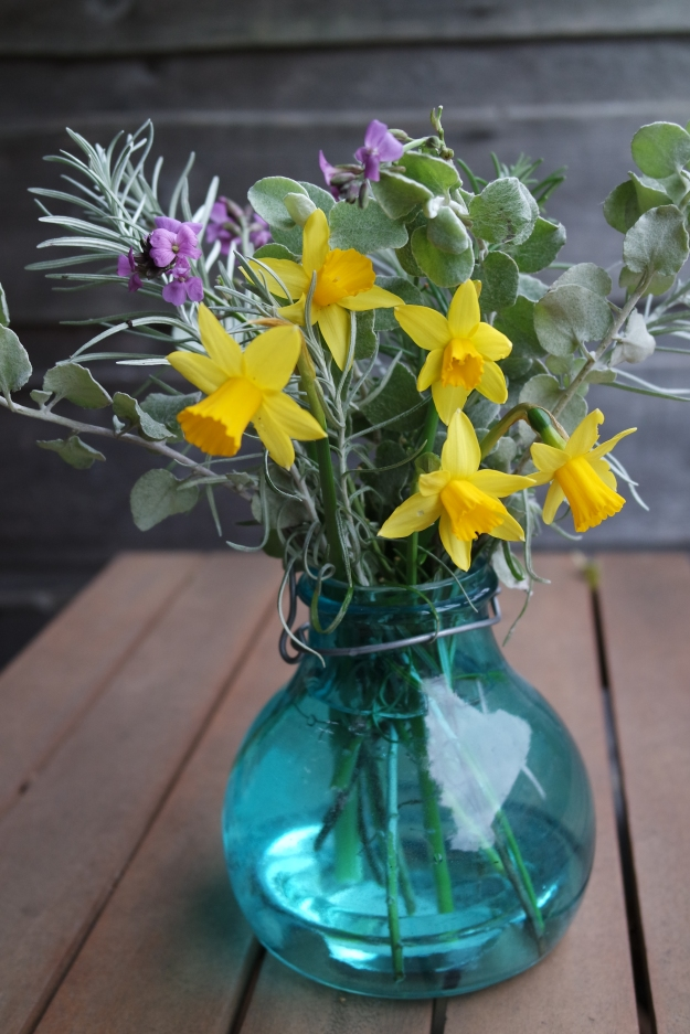 In a vase on monday - daffodils, wallflowers, helicrysom, curry plant and rosemary - 22 February 2016