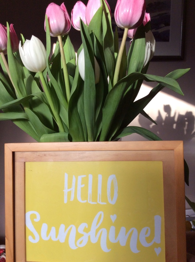 Pink and white tulips hello sunshine sign
