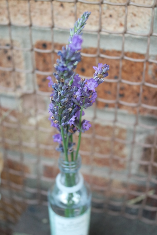 lavender in a very small Pinkster gin bottle