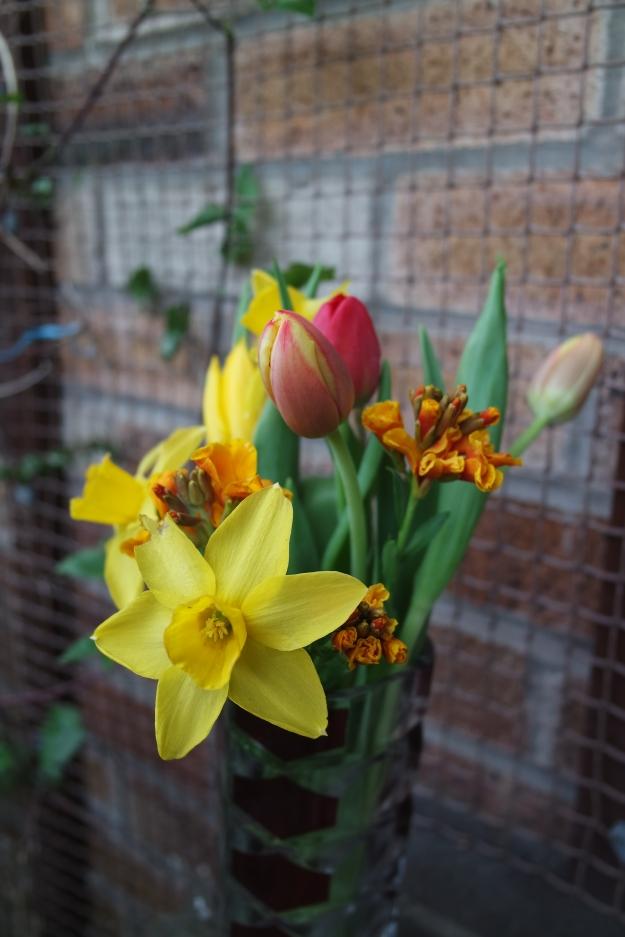 tête-à-tête daffodils, orange and red tulips, orange wall flower, red triangular crystal vase