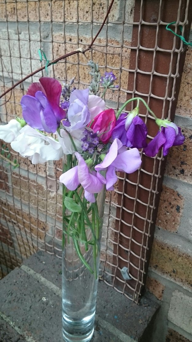 Pink and purple sweetpeas in tall round glass vase