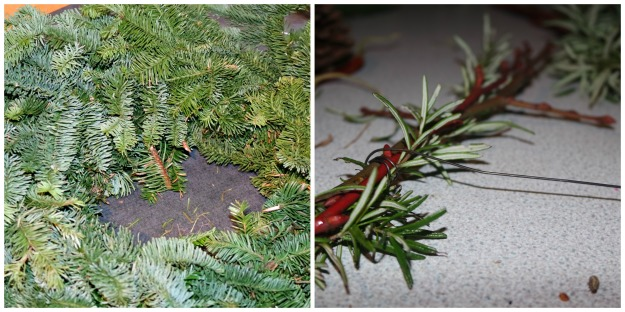 spruce and rosemary.jpg
