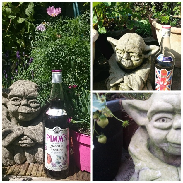 yoda collage with pimms
