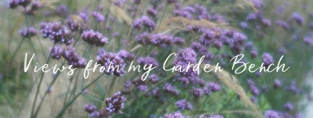 'views from my garden bench' on a photograph of purple verbena blury - Lensbaby Trio 28 - velvet effect